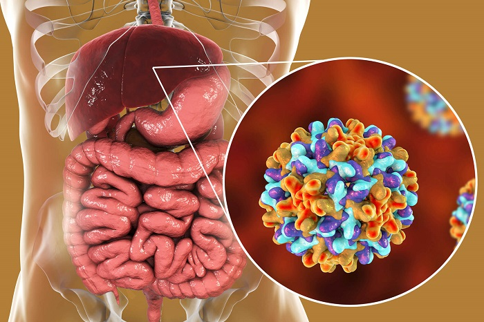 Bệnh viêm gan siêu vi B cũng là một căn bệnh lây qua đường tình dục