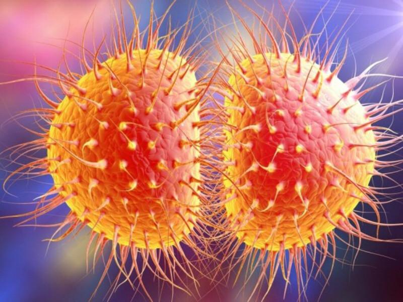 Triệu chứng của người bệnh sẽ phụ thuộc vào loại vi khuẩn gây bệnh